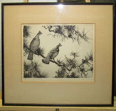 """Aiden Lassell Ripley Sgnd Etching """"Grouse on Pine Bough"""" Listed Sporting Artist"""