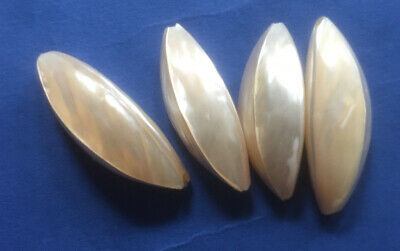 4 X Cream Abalone Drilled Sea Shells For Jewellery Making