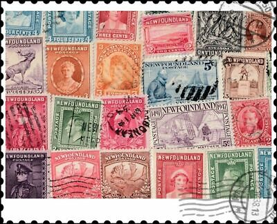 Newfoundland : 50 Different Stamps Collection
