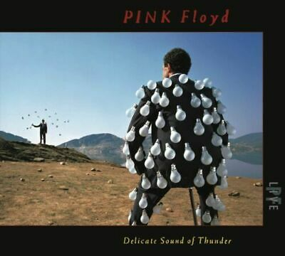Pink Floyd Delicate Sound Of Thunder 2 Cd Fatbox 1988 Time Run Like Hell Time