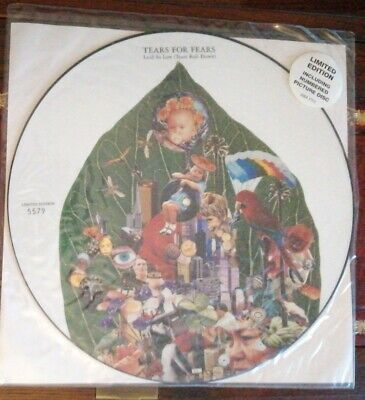 "Tears For Fears Laid So Low (Tears Roll Down) 12"" Single Picture Disc Ltd Ed EX"