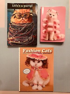 Set of 3 Cat Items, 1 Fashion Cat Book and 2 Writing Books