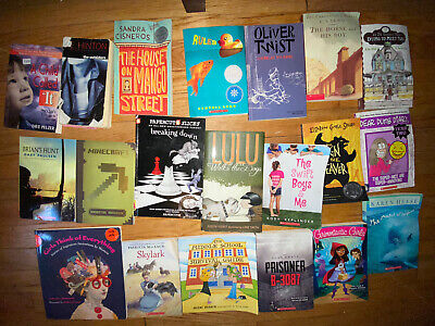 Lot of 20 Chapter Books for Youth Early Reader Young Adult Children RANDOM