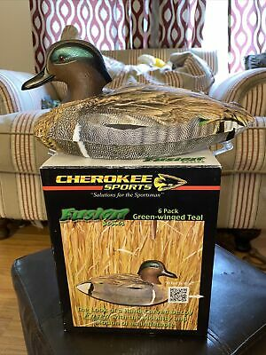 Winged Teal Cherokee Sports Decoys Fusion Series 6 Pack Green