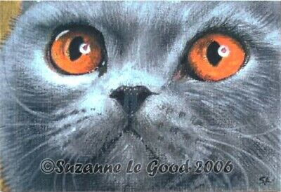 Limited Ed Aceo Blue British Shorthair Cat Print From Original Suzanne Le Good