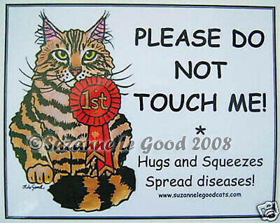 New! Maine Coon Cat Show  No Touch Sign Suzanne Le Good