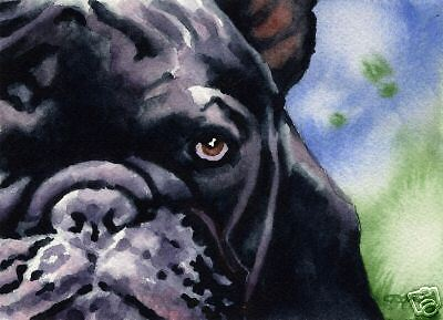FRENCH BULLDOG Painting Dog ART 11 X 14 Signed DJR