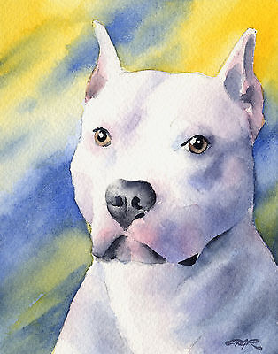 PIT BULL Dog Watercolor ART 11 X 14 LARGE Signed DJR