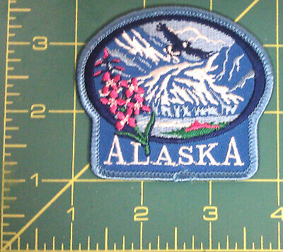 Embroidered Alaska Patch - Glacier & Eagle & fireweed - Iron on Patch New