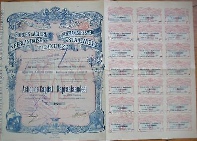 1899 Foundry/Steel Stock/Bond Certificate-Terneuzen, NL