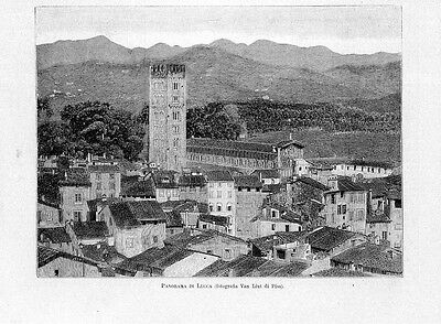 Stampa antica LUCCA veduta panoramica con San Frediano Toscana 1891 Old print