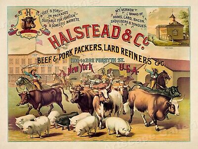 1880s Halstead & Co. Beef Packers Vintage Style Advertising Poster - 24x32