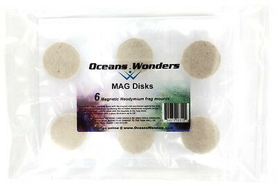 6 Mag Disks For Live Coral Reef Frag Propagation New!