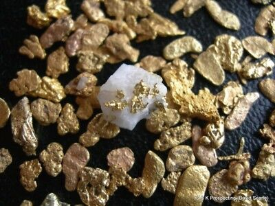 2 lbs Montana Placer gold dredge nugget panning paydirt sample bag sluice box