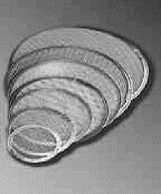 "10"" Heavy Duty Round Baking Screens - 1 Dozen"