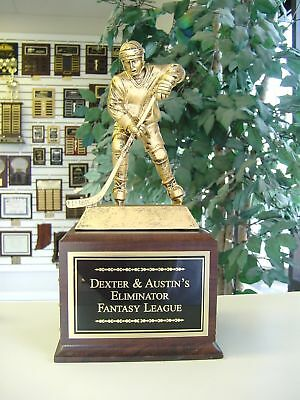 Fantasy Hockey Champion 24 Year Perpetual Trophy