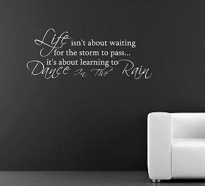 Dance in the Rain Wall Quote Art Stickers Wall Decal Words Lettering bn