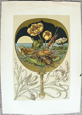 SEDER: Art Nouveau Water Lily Lobster XL - 1886