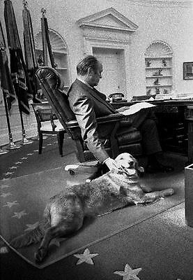 President Gerald R. Ford With Dog Liberty 8X10 Photo