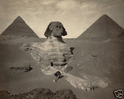 The Sphinx Of Giza Partially Excavated 8X10 Photo 1880