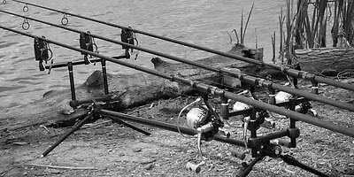 Cygnet Tackle NEW Grand Sniper Carp Fishing Rod Pod *All Types*