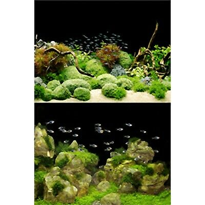 TetraDeco Tetra Deco Art Aquarium Poster 2 Sided Rocks & Plants Theme 60cmx45cm