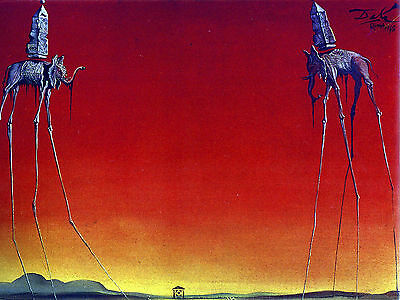 Salvador Dali The Elephants Canvas Print 20x25 Inch