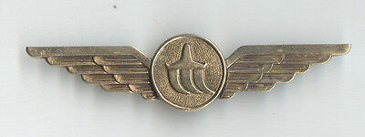 Russian Moscow Airport VNUKOVO Service Staff Wings Badge