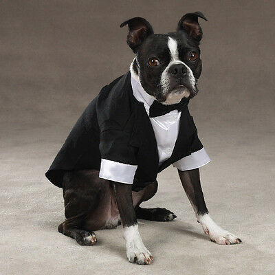East Side Collection Yappily Ever After formal Groom Dog Tuxedo Black All Sizes