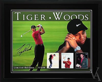 Tiger Woods Signed & Framed Memorabilia Photos Poster Limited Edition