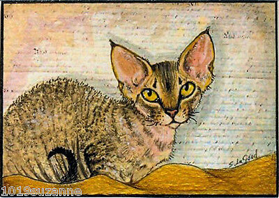 Aceo Limited Edition Mounted Devon Rex Cat Painting Print By Suzanne Le Good