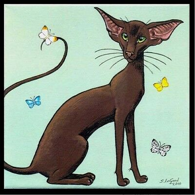 Limited Edition Havana Oriental Cat Butterfly Painting Print By Suzanne Le Good