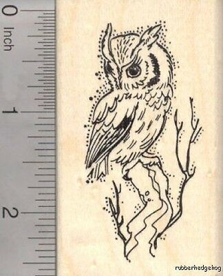 Owl Air Faux Post Rubber Stamp D5509 WM