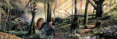 Trophy Country Turkey Print by Mike Flentje   14.5 x 5