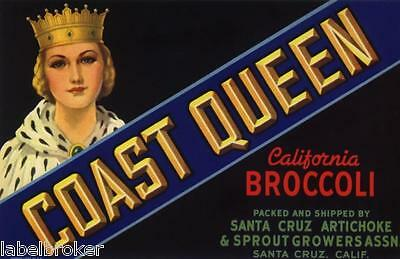 Crate Label Vintage Vegetable  Coast Queen Santa Cruz 1940S Broccoli  Antique