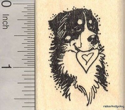 Bernese Mountain Dog Rubber Stamp, With Heart in Mouth Valentine's Day E18607 WM