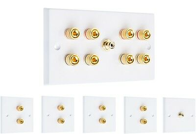 Complete 4.1 Surround Sound Speaker Wall Face Plate Kit