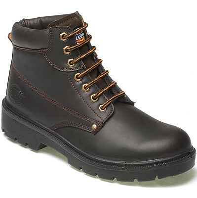 Dickies Antrim Safety Work Boots Brown Size Uk 5.5 - 12 Fa23333 Leather Mens