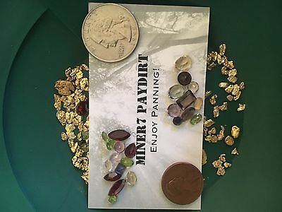 GOLD PAYDIRT 2 Pounds Of Very Rich PayDirt Now with gemstones!