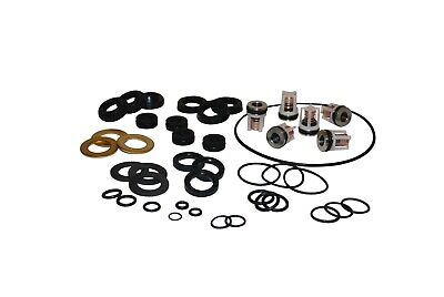 Karcher Pump Rebuild Kit 2.884-216.0