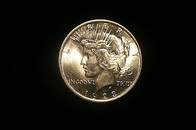 1923 P Peace Silver Dollar (Uncirculated)