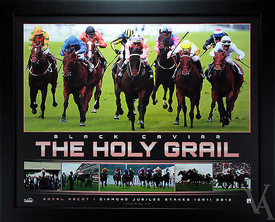 Horse Racing Black Caviar Holy Grail Lt Edition Royal Ascot Framed Poster Photo