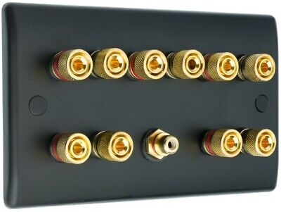 5.1 Matt Black Speaker Wall Face Plate 10 Gold Binding Posts + Single RCA Socket