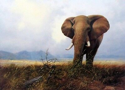 "Last of the Gentle Giants Elephant Print  By Derk Hansen  21.75"" x 16"""