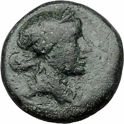 Sardes in Asia Minor  133BC Rare Ancient Greek Coin Apollo Club i31495