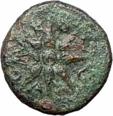 Gambrion (Gambria) in Mysia  4th cent BC Ancient Greek Coin APOLLO STAR  i28147