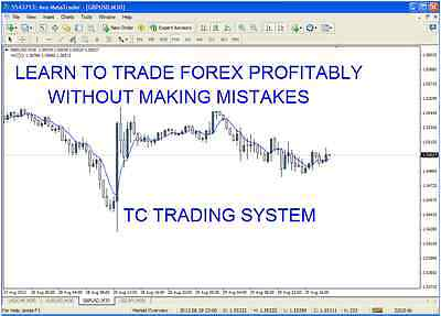 Forex trading system - PDF guide with strategy template + 1 month email support