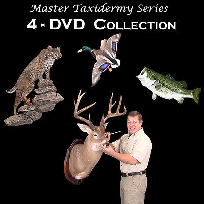 Learn Taxidermy Videos on  4-DVD's - Deer, Fish, Duck, Bobcat