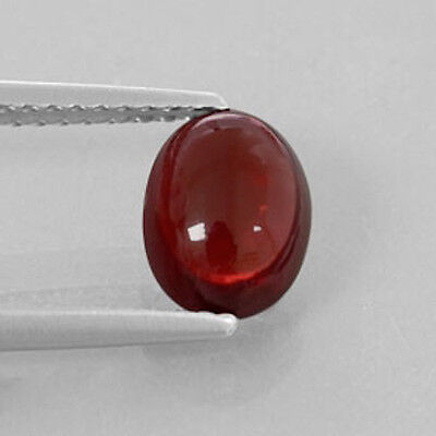 MasterpIece Collection: Bright Orange Red Garnet Oval Cabochon (6x4-10x8mm)