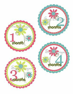 Baby Monthly Stickers Milestone Photo Prop Stickers Baby Girl Daisy Shower Gift